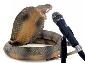 cobra with a microphone